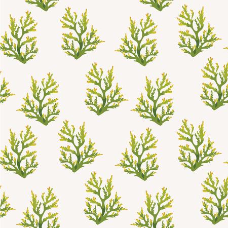 Fond d'écran marin - motif transparent avec des coraux verts sur fond blanc. Vecteurs