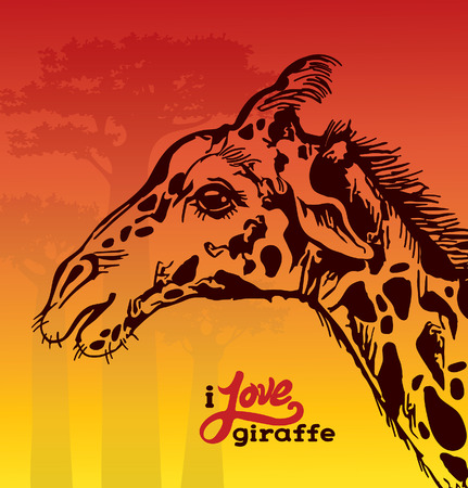 Cartoon graphic giraffe and silhouette of baobabs on a sunset background. Vector hand drawing Illustration. African sketch.