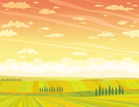calmness: Summer rural landscape with yellow field and green trees on a sunset sky background. Vector nature illustration.