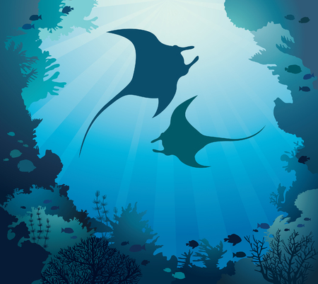 Silhouette of two mantas and coral reef on a blue sea background. Vector tropical illustration with marine life. Underwater seascape image.