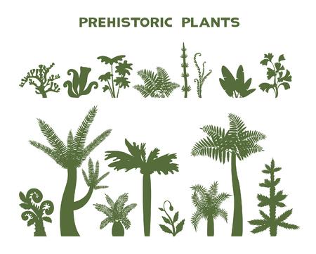 植物コレクション - 白地に先史時代の植物のシルエットのベクター イラスト。