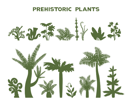 Vector illustration with botanical collection - silhouette of prehistoric plants on a white background.