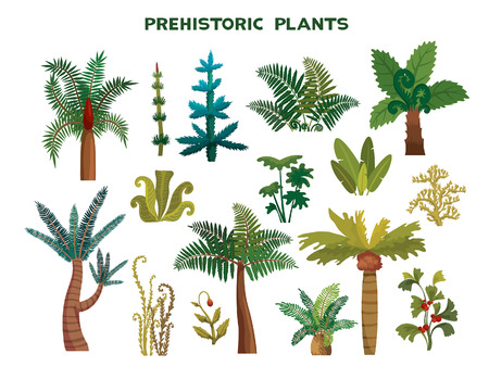 Set with prehistoric plants on a white background. Vector illustration. Collection of extinct plants.