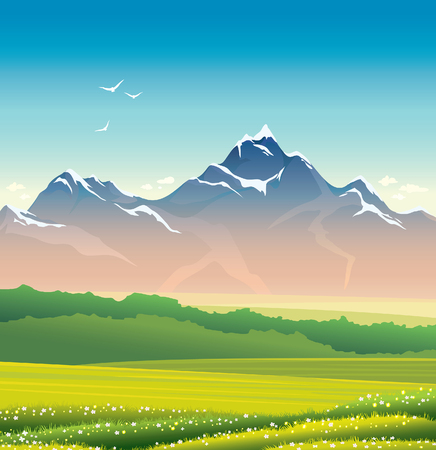 summer nature: Summer landscape with green grass, meadow and mountains. Nature illustration. Illustration