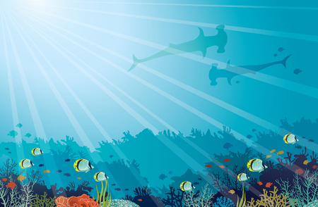 Underwater marine life. Coral reef, silhouette of two hummerhead sharks and school of butterfly fishes on a blue sea background. Vector illustration. Illustration
