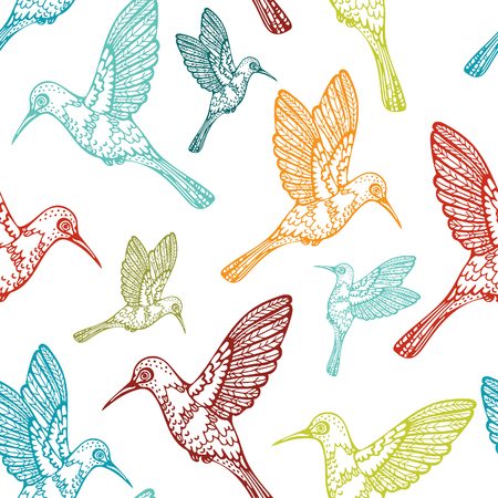 Vector seamless pattern with birds. Colored hummingbirds on a white background.