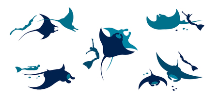 Silhouette of freediver and mantas on a white background. Vector set of freediver and underwater animal - manta.