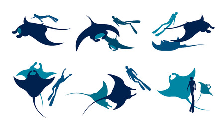 Vector illustration with collection of mantas and freediver. Silhouette of freedivers and mantas on a white background. Illustration