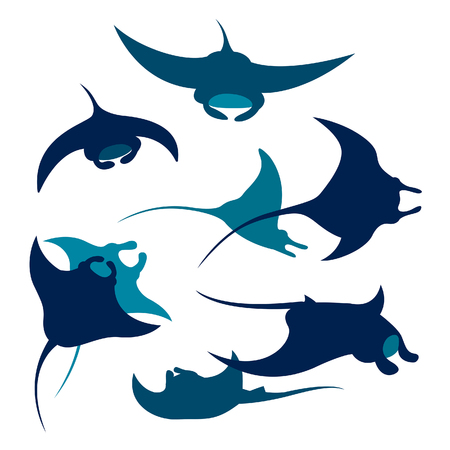 Vector silhouette of mantas on a white background. Set of underwater animal - mantas.