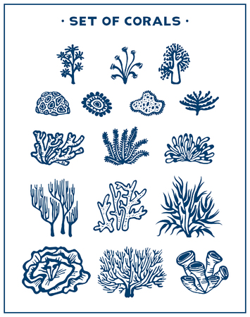 Underwater set silhouette of corals and algae on a white background vector illustration.