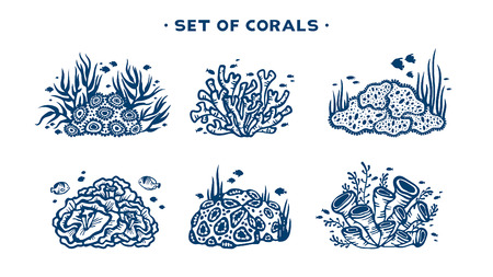 Underwater set coral reef with fishes and seaweeds on a white background vector illustration.