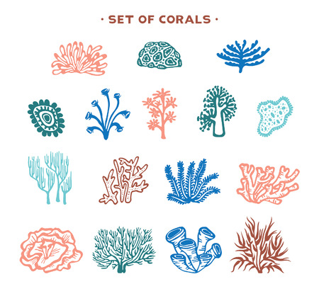 Underwater set cartoon corals and seaweeds on a white background vector illustration.