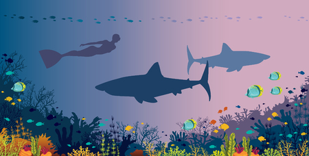 Silhouette freediver with monofin, big sharks, coral reef and tropical fishes in a sea background. Vector ocean illustration. Underwater nature and marine wildlife. Water sport - free diving. Illustration