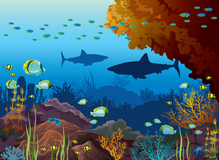 Underwater nature and marine wildlife. Silhouette of sharks, school of tropical fishes and coral reef on a blue sea background.