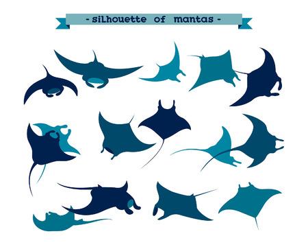 Vektorillusrtation mit Silhouette von Mantarochen auf weißem Hintergrund. Set Unterwassertier - Mantas.