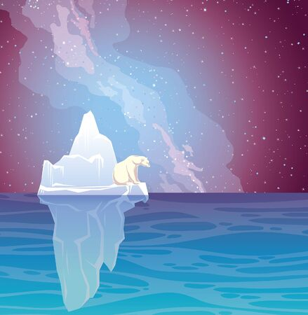 Vector nature illustration. Sea landscape with iceberg, white polar bear and night starry sky with nothern lights. Illusztráció