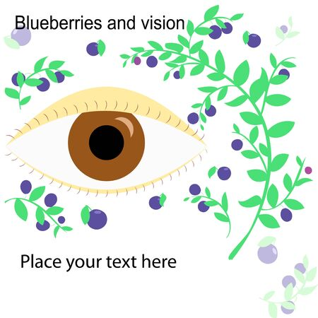 whortleberry: Isolated flat illustration of eye and blueberries