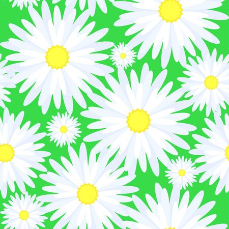 Seamless texture of flowers chamomile Illustration