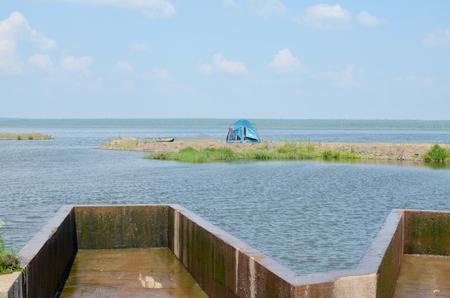Large pond Фото со стока