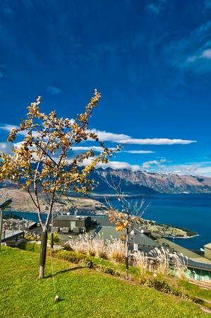 wakatipu: lake Wakatipu queenstown NZ