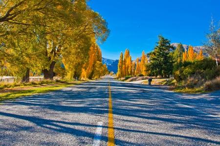 Te: A Road South of Te Anau, New Zealand South Island.  Stock Photo