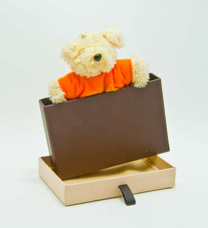 northpole: bear in gift box  Stock Photo