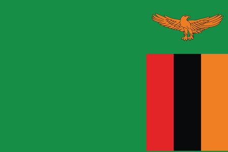 zambia: Flag of Zambia. Vector illustration. Illustration