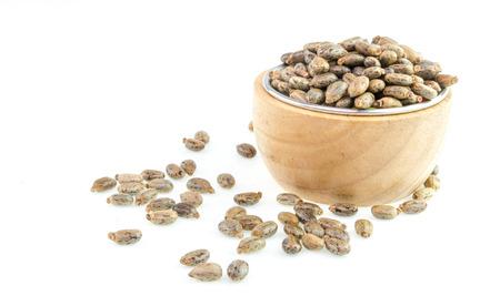 purgative: Castor oil seeds - ricinus communis on white background