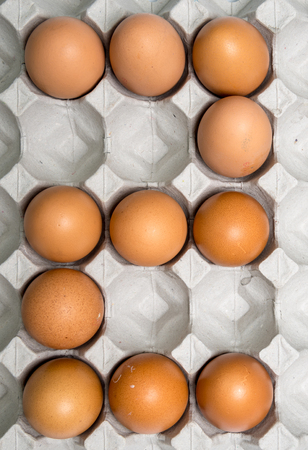 four in one: Set of number zero one two three four five six seven eight nine show by  eggs chicken in paper tray. Stock Photo