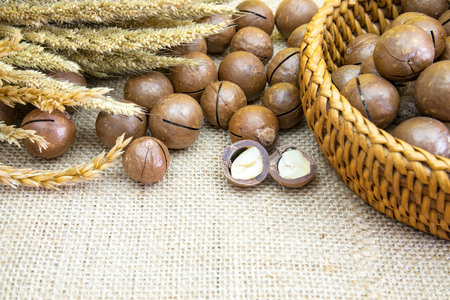 Shelled and unshelled macadamia nuts on wood vintage background