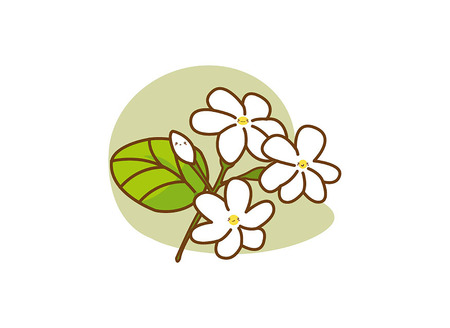 Vector cartoon jasmine on white background