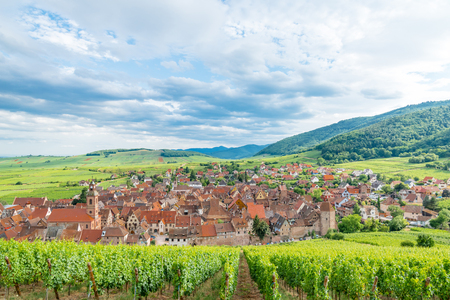Alsace village, vineyard, Riquewhir, France, Europe, Automn Stock Photo