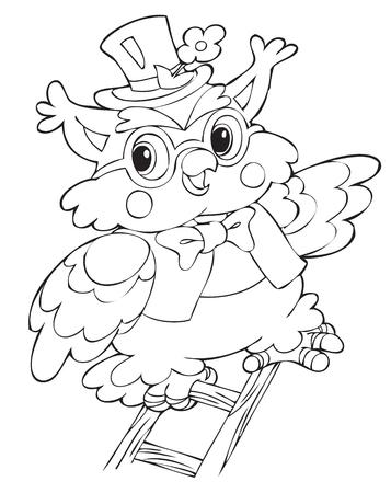 biodiversity: illustration of the beautiful owl Illustration