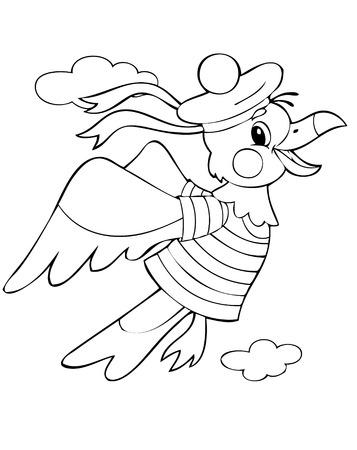 albatross: illustration of the flying albatross