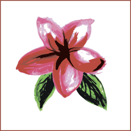 whit: Frangipani or plumeria painted watercolor style isolated on whit