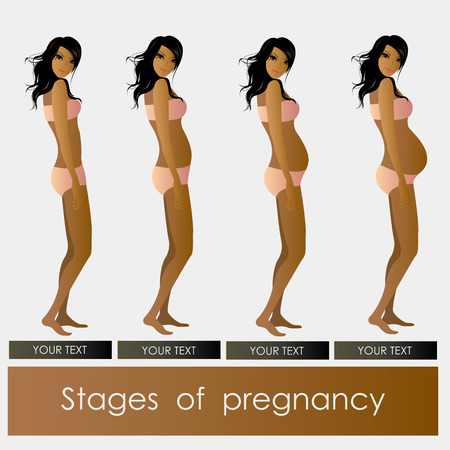 firstborn: Stages of Pregnancy beautiful girl in vector format