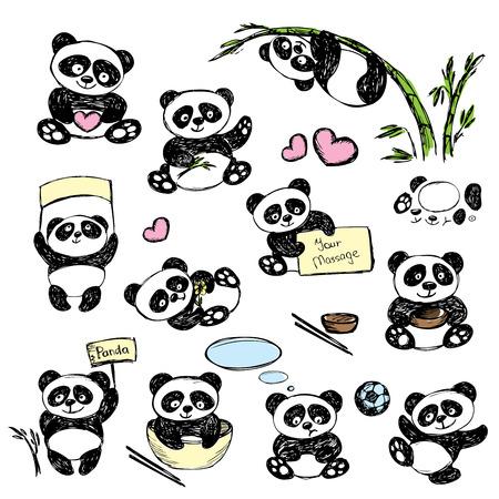 Establecer Panda linda en varias poses, dibujo a mano, vector