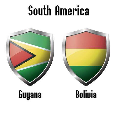 bandera de bolivia: Guyana y Bolivia �conos tema, vector Vectores