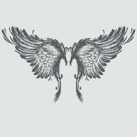 Wings,hand drawing, vector illustration. Vektorové ilustrace