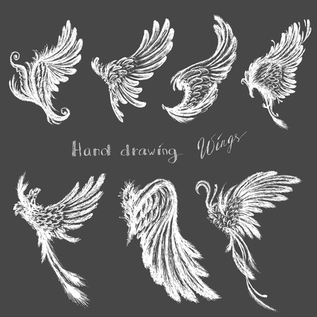 wings: Set Wings,hand drawing, vector illustration Illustration