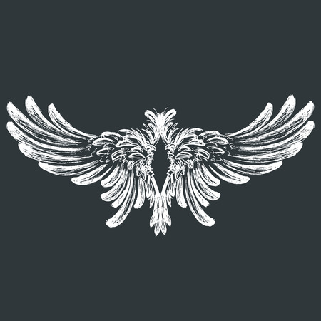 wings vector: Wings on black background,hand drawing, vector illustration