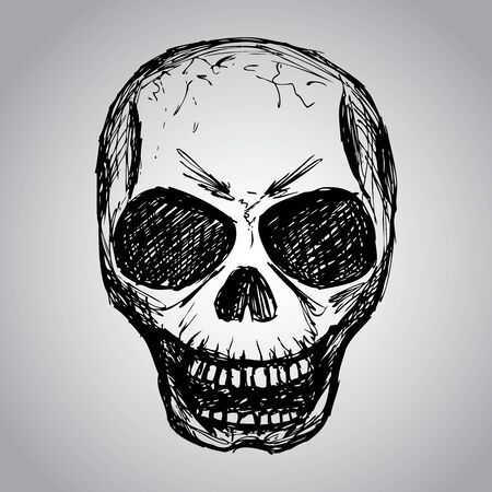 disegno a mano: Skull. Disegno a mano, vettore Vettoriali