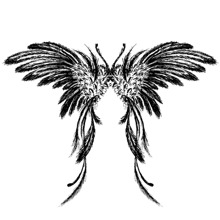 Wings isolated on white background,hand drawing, vector illustration