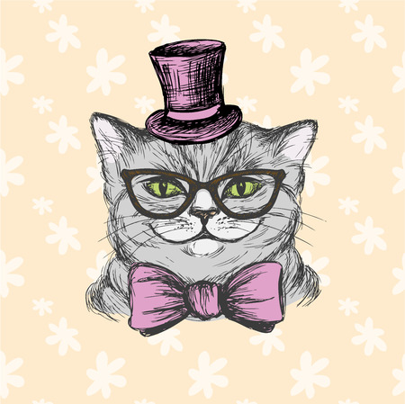 cat suit: Fashion cat in a hat, glasses and a bow tie. Hand drawing vector illustration