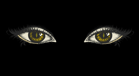 women face stare: pair of eyes with yellow irises, on a black background, hand drawing, vector illustration