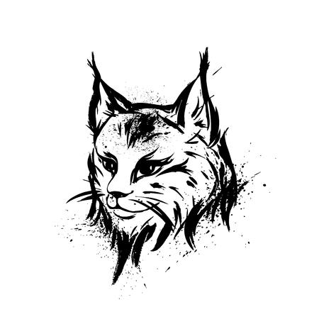 predator: Lynx. Wild cat. Predator. Hand drawn. Black and white. Stylized. Decorative. Vector