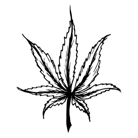 Cannabis (marijuana) leaf flat icon,isolated on white ,stock vector illustration