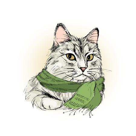 Encantador gato macho con bufanda, dibujo a mano ilustración vectorial Foto de archivo - 83743136