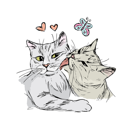 A pair of cats in love, hand drawing isolated on white background, stock vector illustration