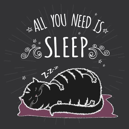 Adorable fat black cat is sleeping,funny lettering - all you need is sleep,vector illustration